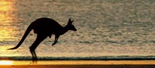 Le tour du monde de la Mort ! 4e étape : l'Australie